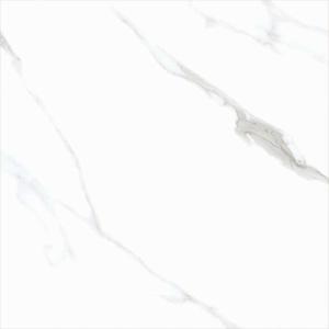 Artic White Polido<br/>120×120 cm